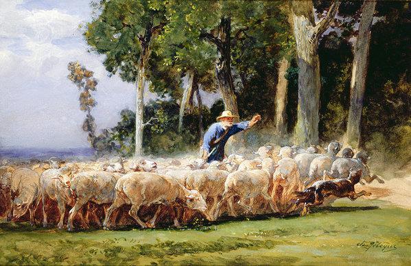 Beauceron,history, Pierre Megnin, Club des Amis du Beauceron,Berger de la Beauce,Bas Rouge,Red Stockings