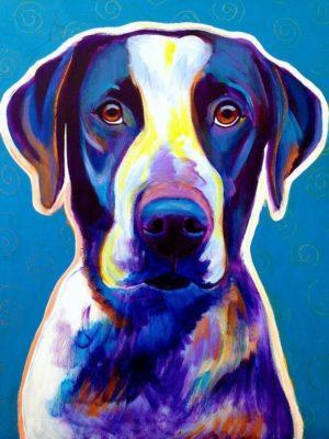 Bluetick Coonhound,English Coonhound,Treeing Walker Coonhound,