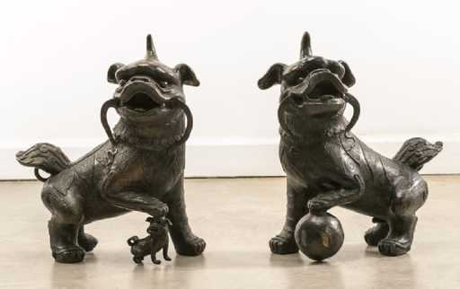Shih Tzu, Foo Dogs, Legend,myth, little lion dog, Buddha