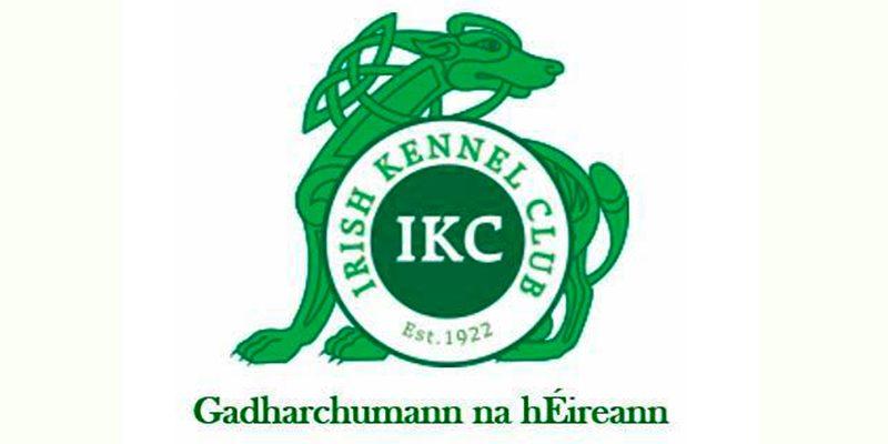 Bloodhound,logo, kennel club