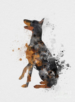 Doberman Pinscher,drill team,Karl Frederich Louis Dobermann