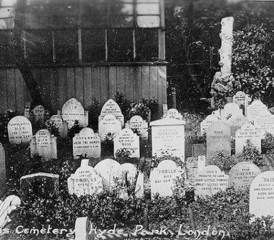 cemetery,Hyde Park,Coon dog cemetery,Edinburgh Castle's Special Garden, Hartsdale Pet Cemetery, Cimetière des Chiens et Autres Animaux Domestiques, Doberman Pinscher War Dogs grave in Guam