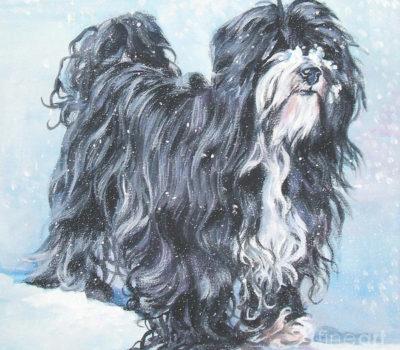 Tibetan Terrier,Dr. A.R.H. Greig, legend