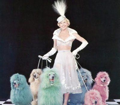 Doris Day, animal rights, PETA, hsus, Que Sera, Sera, TV, movies,