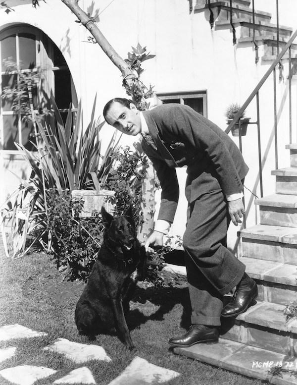 German Shepherd Dog,color,genes,Basil Rathbone