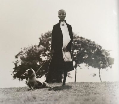 Penelope Tree, Basset hound, David Bailey
