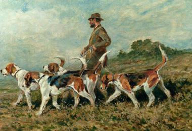 Foxhound, Beagle, Harrier,