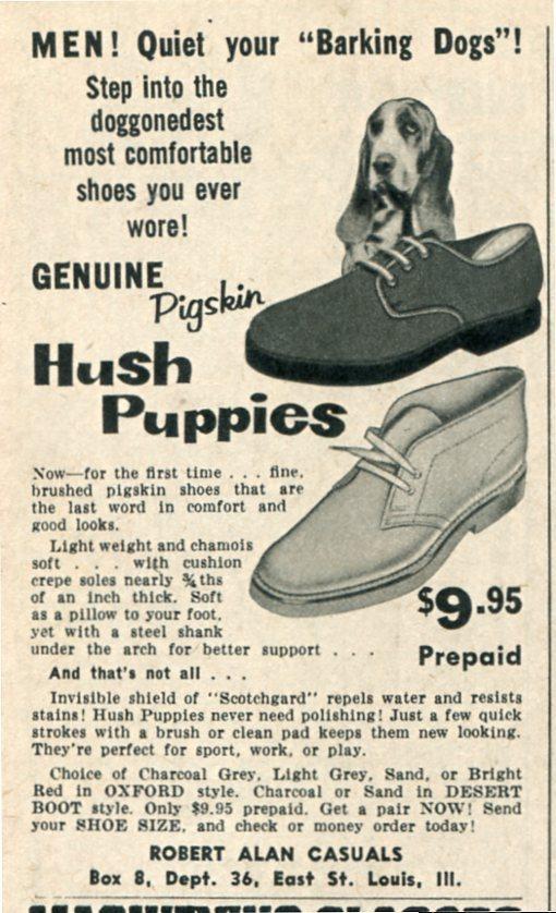 Hush Puppy, Basset Hound, Hank The Basset, Velvet and Jasmine, basset, advertising,marketing