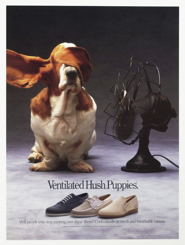 Hush Puppy, Basset Hound, Hank The Basset, Velvet and Jasmine, basset, advertising,marketing