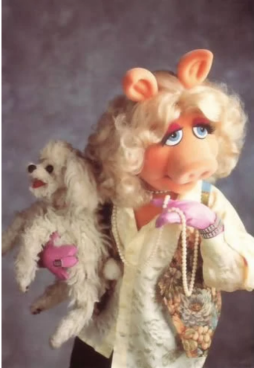 Poodle, FooFoo,Miss Piggy,TV, Movies