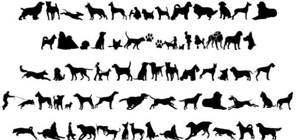 dog font