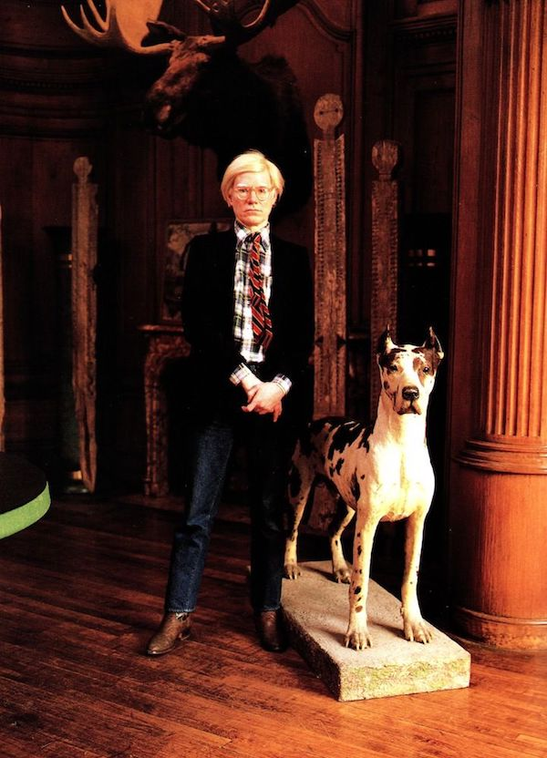 The Great Dane,Cecil,Andy Warhol,museum,