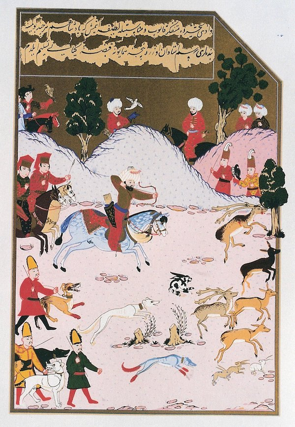 Saluki,Caravan Hound,ears, cropping, custom, tradition,Micaela Lehtonen,Sir Terence Clark