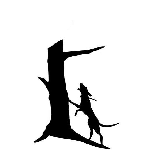 Coonhound,Pumi, Finnish Spitz,Treeing Tennessee Brindle,Bluetick Coonhound,Grand Basset Griffon Vendéen,Petit Basset Griffon Vendéen