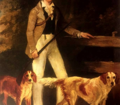 Rossmore Setter,Arran Setter,Irish Red and White Setter, Captain A. M. Stewart of Donegal