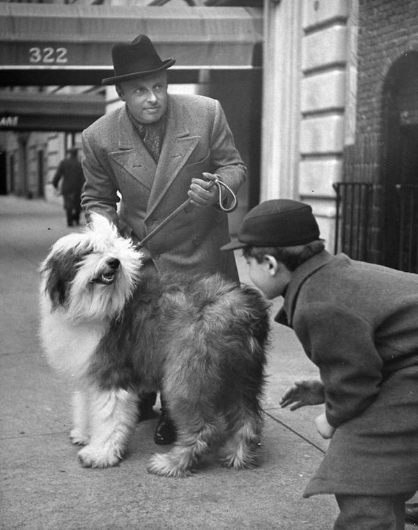 Old English Sheepdog,Andre Kostelanetz,Nina Leen,Life Magazine,