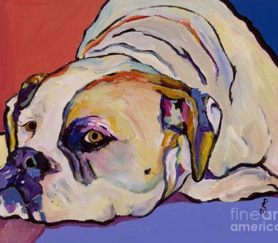 American Bulldog,Wetterhoun,Southern Whites, Old Southern Whites,Dr. John D. Johnson, Alan Scott