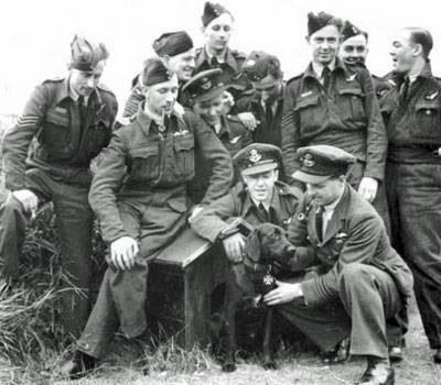Labrador Retriever,Digger,RAF,WWII,Ghost,Dam Busters,movie,film,Guy Gibson