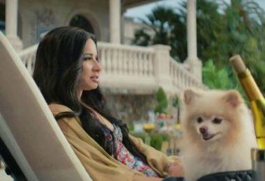 Pomeranian,TV,advertising, vocal fry, commercial,Paris Hilton,