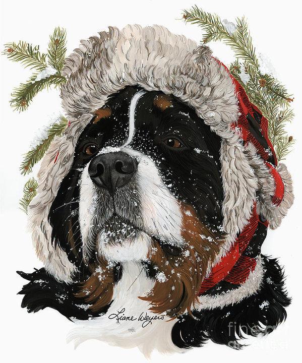 Bernese Mountain Dog,Berner Sennenhunde,Dürrbächler