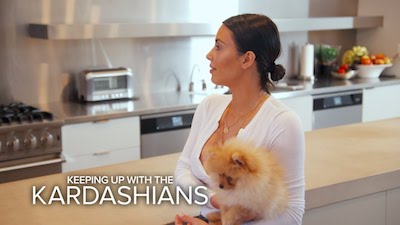 Kardashians,Italian Greyhound,Boxer, Dachshund,TV,Great Dane,Chihuahua