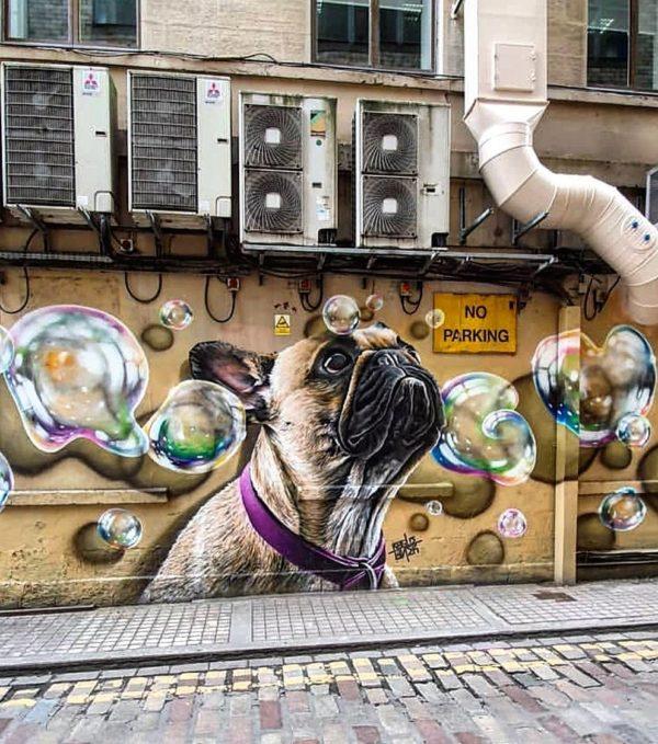 graffiti,art, rogue-one,street art,mural, french bulldog