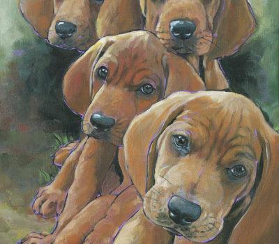 Leon Redbone, Redbone Coonhound,Saddleback,Dickran Gobalian,George Birdsong,Dr. Thomas Henry
