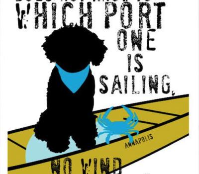 Cão de Água, Portuguese Water Dog, Boating