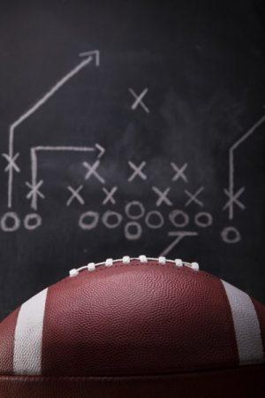 Alaskan Klee Kai,football, Bill Belichick