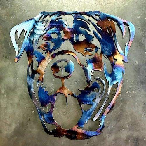 Rottweiler, Leonberger, Albert Kull, Richard Strebel