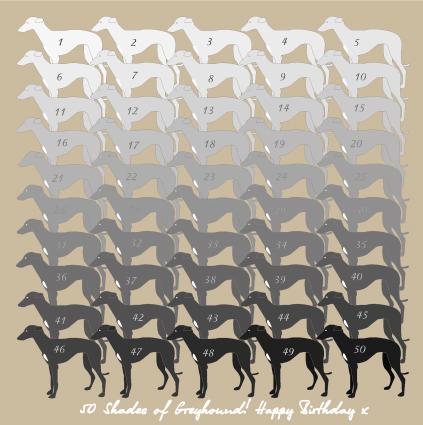 name, history, Greyhound,terms,