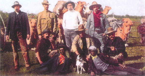 Mini Foxie, Tenterfield Terrier,Dave Burke,George Woolnough,Mini Foxie, Tenterfield Terrier,