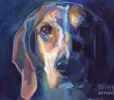 Beagle, standards, English Beagle, American Beagle
