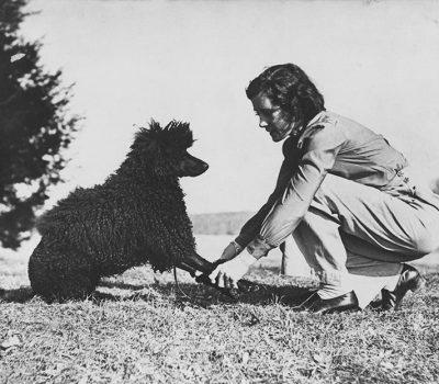 Poodle, Obedience, Helen Whitehouse Walker,Walter Lippmann,Blanche Saunders,Golden Retriever