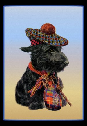 Scottish Terrier, J.B. Morrison,Splinter II,The Badger, Strathbogie,Captain Gordon Murray, Sir Paynton Pigott,