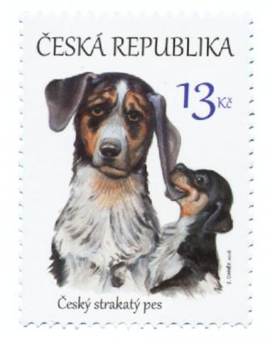 Horák's Laboratory Dog,Bohemian Spotted Dog,Czech Spotted Dog, František Horák, Cesky Terrier