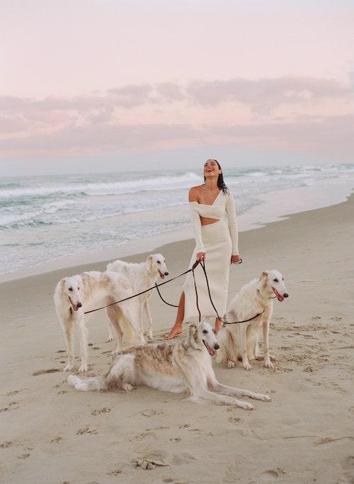 Borzoi, Vanity Fair, Gal Godot,Borzoi in Israel בורזוי בישראל, Russkaya Psovaya Borzaya, Russian Wolfhound