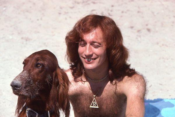 Bee Gees, Barry Gibb, Maurice Gibb, Robin Gibb, Irish Wolfhound, Labrador Retriever, Pyrenean Mountain Dog, Afghan Hound, music