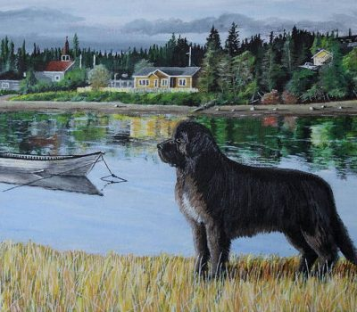 Newfoundland,Richard Edwards