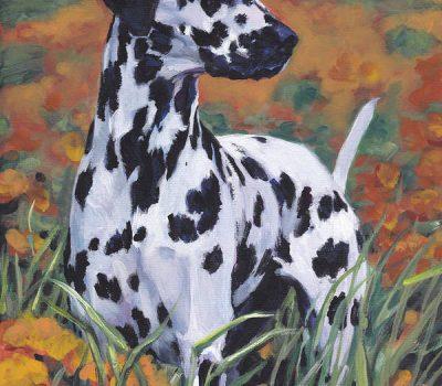 Dalmatian, genetics,coat,English Coach Dog, Carriage Dog, Plum Pudding Dog, FireHouse Dog, Spotted Dick