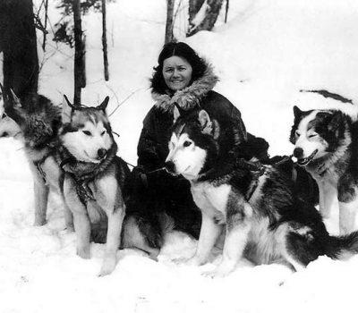 Kotzebue Line, Alaskan Malamute, Milton and Eva Seeley, Arthur Treadwell Walden, Leonhard Seppala,Rowdy of Nome,Gripp of Yukon,YukonJad