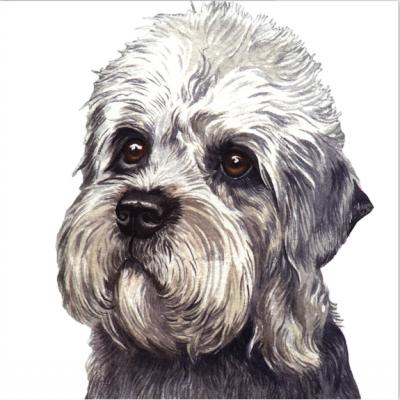 "Dandie Dinmont Terrier, Francis Sommer, James Allan,Willie ""Piper"" Allan"