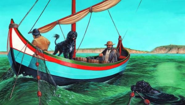 Berbers, goths,history,Portuguese Water Dog