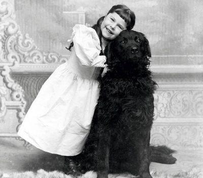 Flat-Coated Retriever, coat,Sewallis Evelyn Shirley
