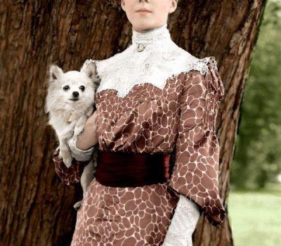 Pekingese, Chihuahua, Alice Lee Roosevelt Longworth,