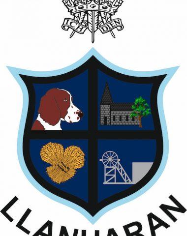 Welsh Springer Spaniel,Colonel Blandy-Jenkins,Llanharan Rugby Football Club,Ch Corrin