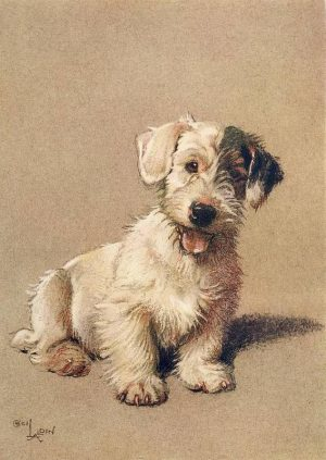 Sealyham Terrier, Ch. St. Bride's Demon,Peer Gynt,Nellie the Mariners, Mr. and Mrs. Victor Higgon, Captain Jack H.Howell, Adrian Howell,