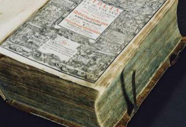 Dalmatian, Jurij Dalmatin, Bible,