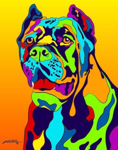cane corso, color, genetics,