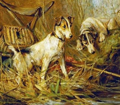 Smooth Fox Terrier, Pitch, Colonel Thomas Thornton